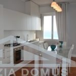 Dmitrii kondominium2 065